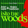 Into The Woods, HEB Performance Hall At Tobin Center for the Performing Arts, San Antonio